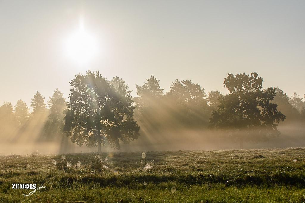 Mistige ochtend - Vuursteenberg [Wezep] 20170827 [9793]