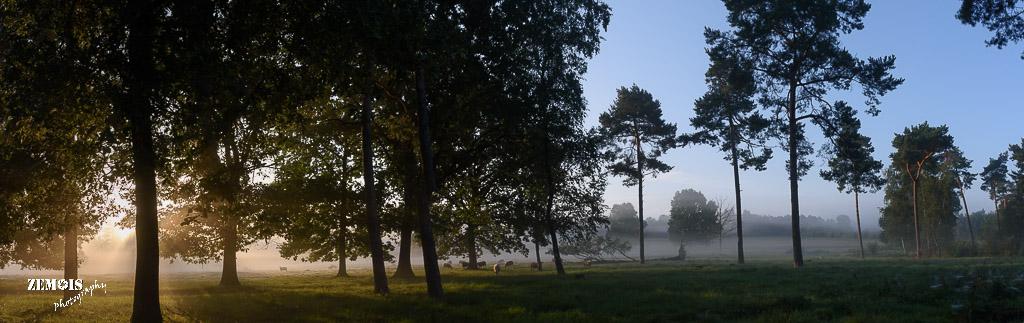 Mistige ochtend - Vuursteenberg [Wezep] 20170827 [9753]-Pano