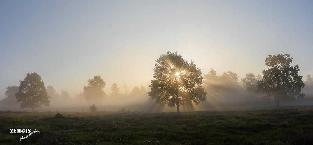 Mistige ochtend - Vuursteenberg [Wezep] 20170827 [9774]-Pano